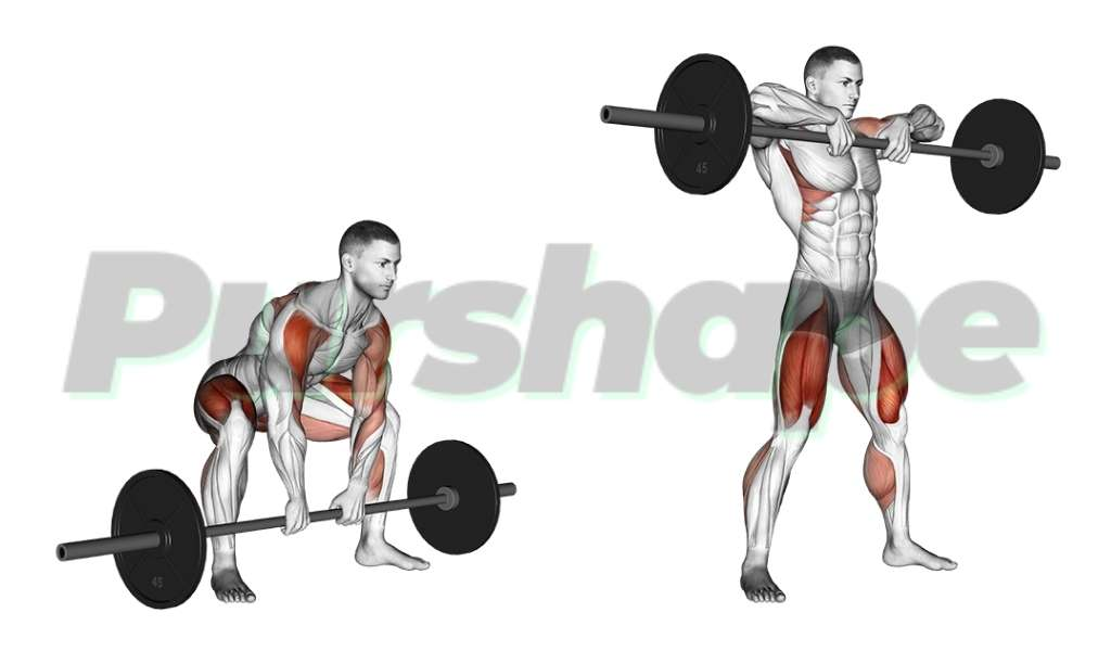 Exercice squat sumo avec rowing vertical debout
