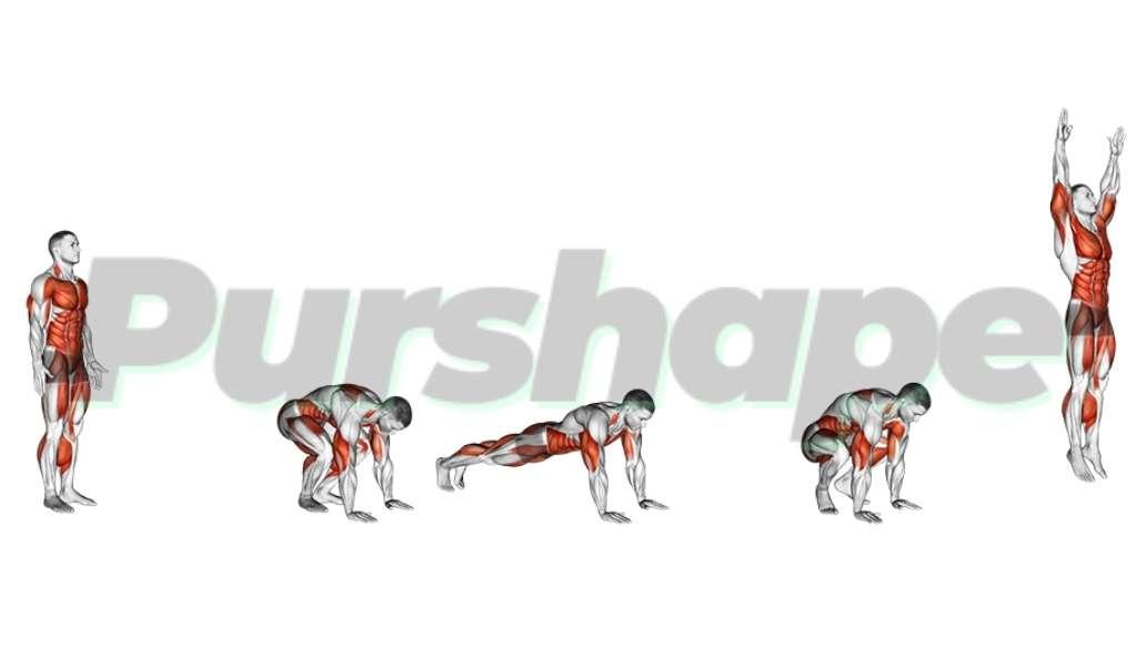 exercice burpees