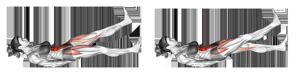 Flutter kicks exercice purshape